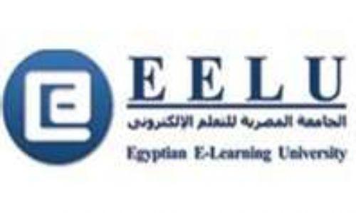 الجامعة المصرية للتعليم الإليكتروني